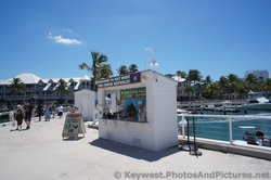 An information booth at Key West cruise dock area.jpg