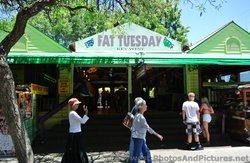 Fat Tuesday Restaurant & Bar Key West.jpg