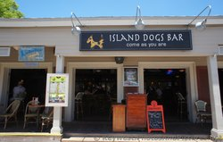 Island Dogs Bar Key West.jpg