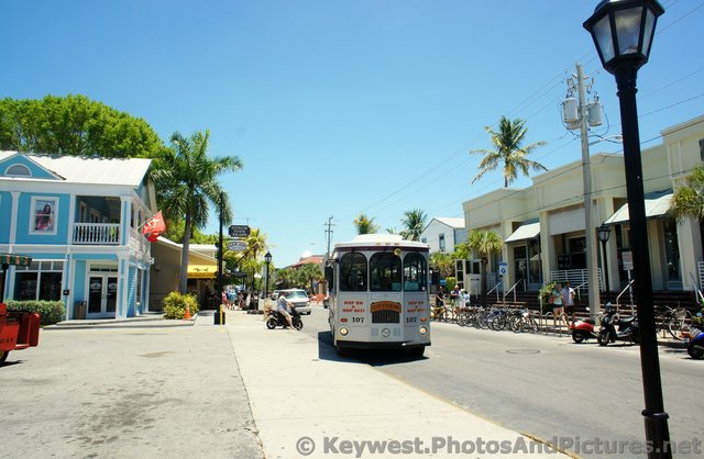 Key West Cityview Hop on Hop Off Bus.jpg